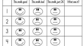 Sensory Smelling Activity