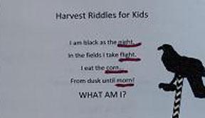 Harvest Riddles