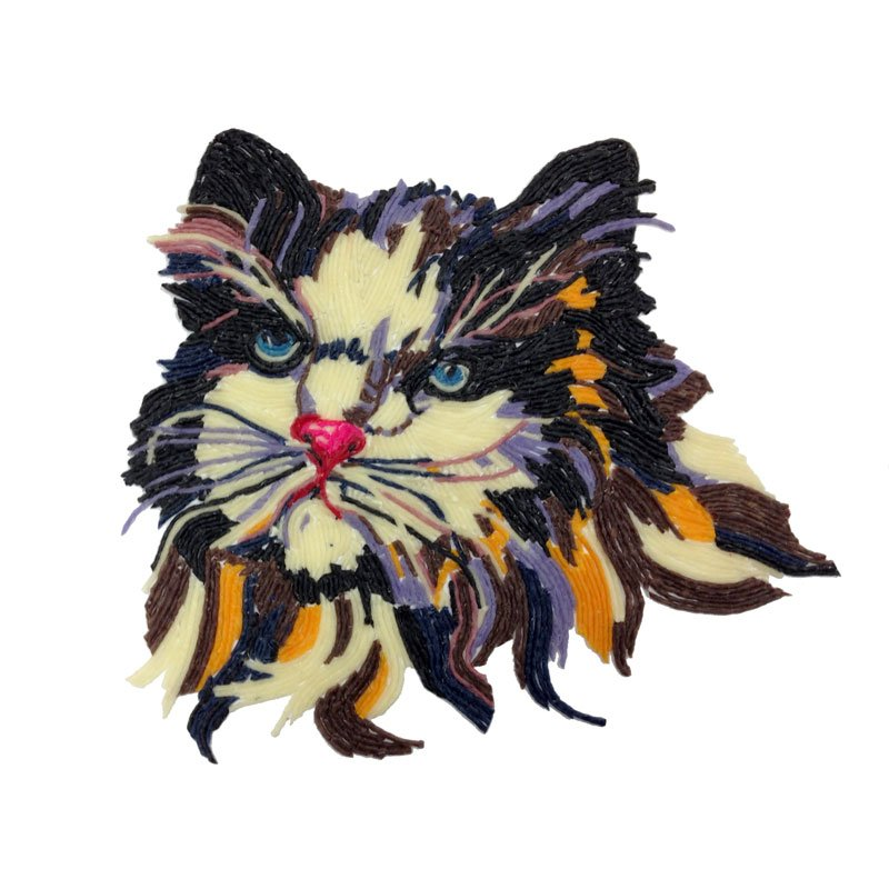Wikki Cat