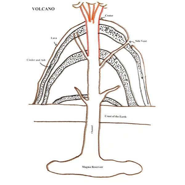 Volcano diagram unlabled wiring diagram for light switch modern anatomy of a volcano worksheet crest anatomy and physiology rh stockmarketresources info brain diagram unlabeled unlabeled flower diagram ccuart Choice Image
