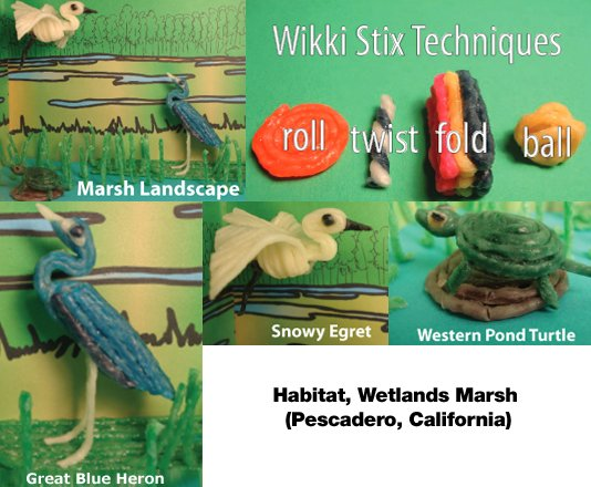 Habitat, Wetlands Marsh (Pescadero, California) Lesson Plan