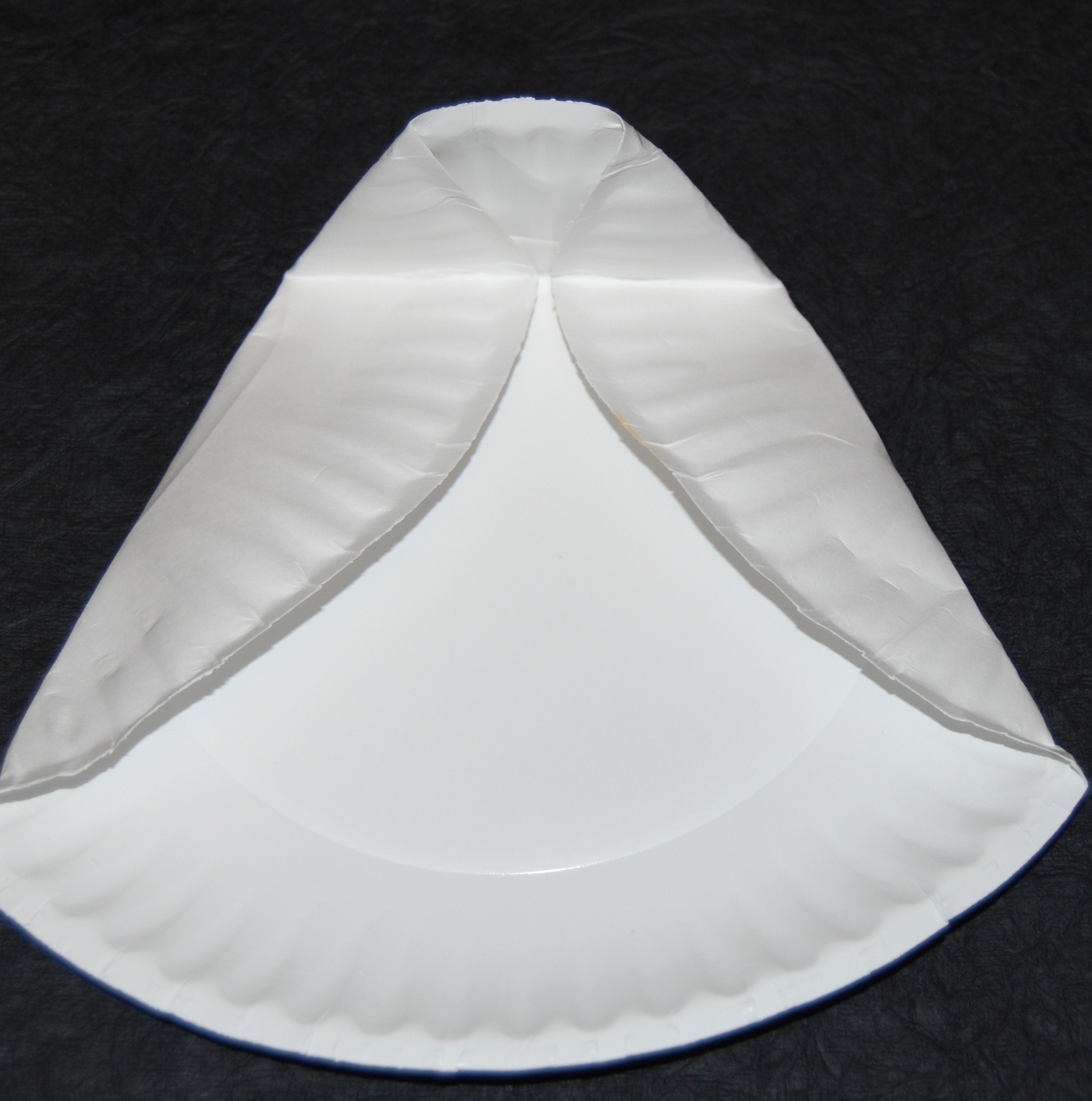 Paper Plate Folding for Owl Craft